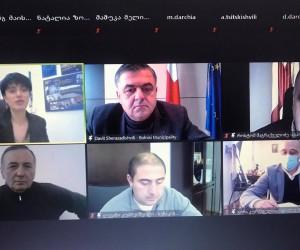 ევროპულ ქარტიას 14 ქართული მუნიციპალიტეტი შეუერთდა